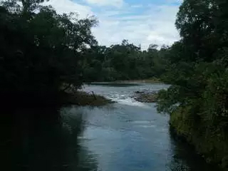 Sarapiqui River Clean Up