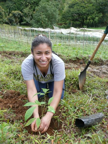 Service Projects_039